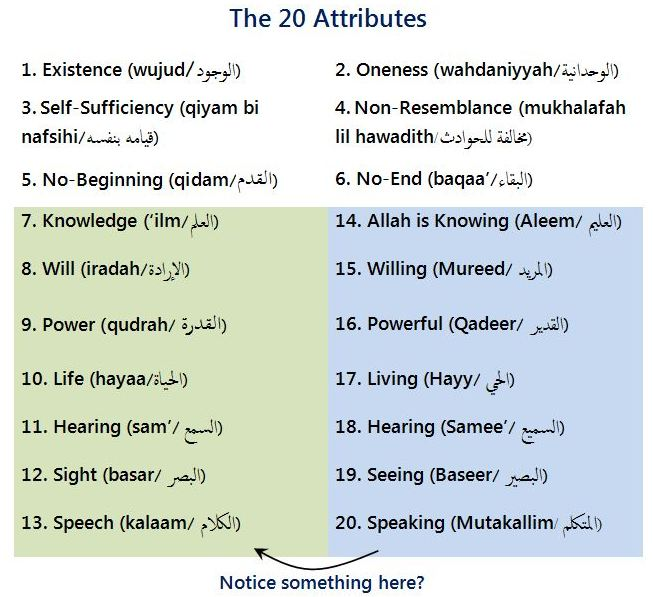 20 attributes